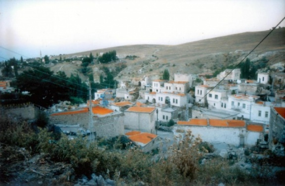 Ayvalı with apricots on the roofs